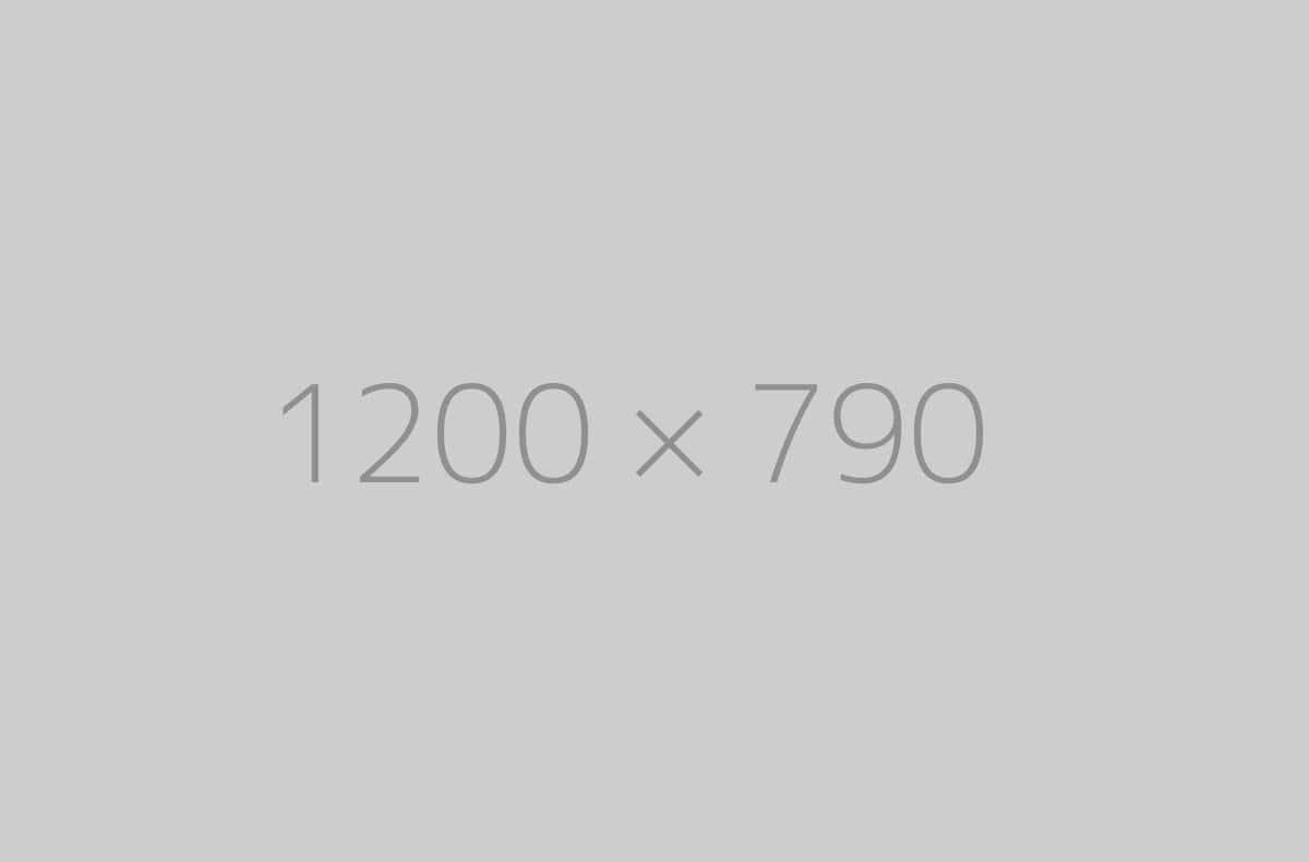 hongo 1200x790 ph 1