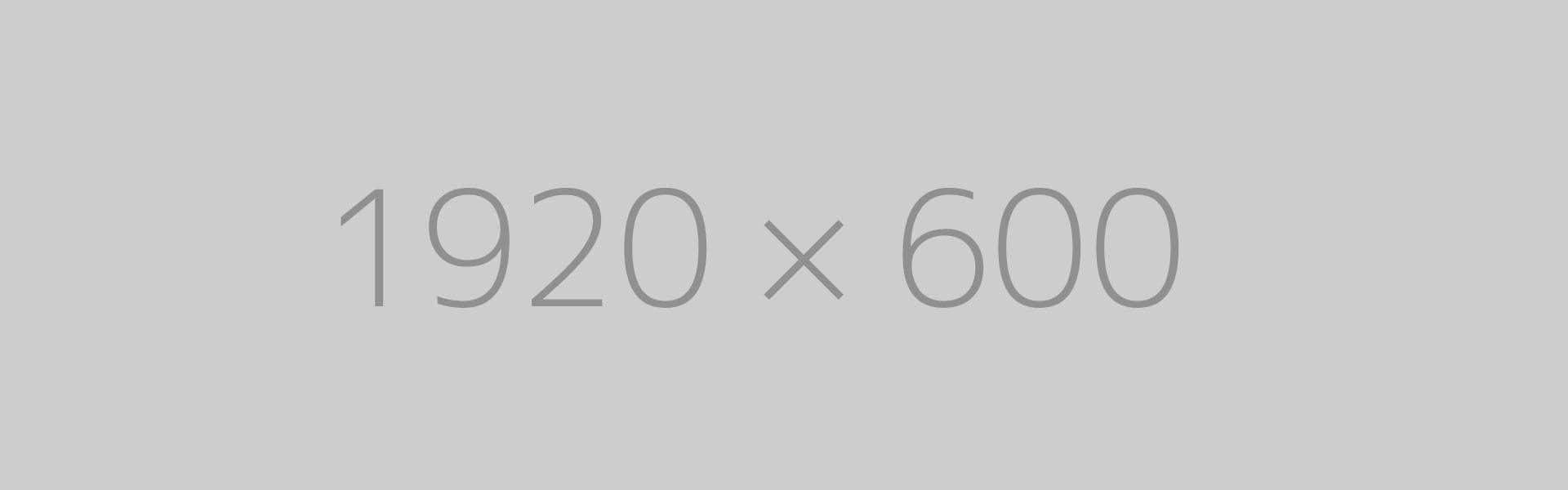 hongo 1920x600 ph