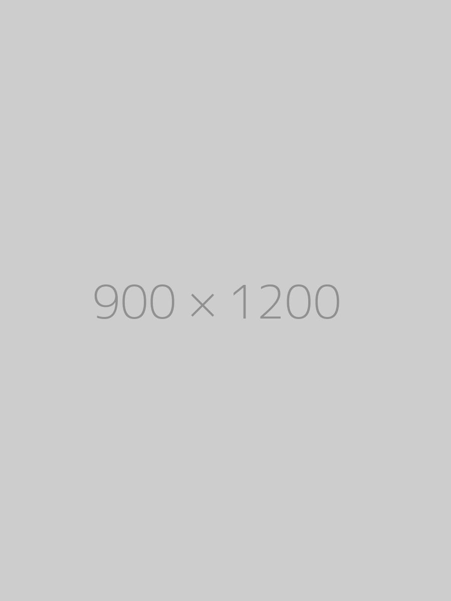 hongo 900x1200 ph 1