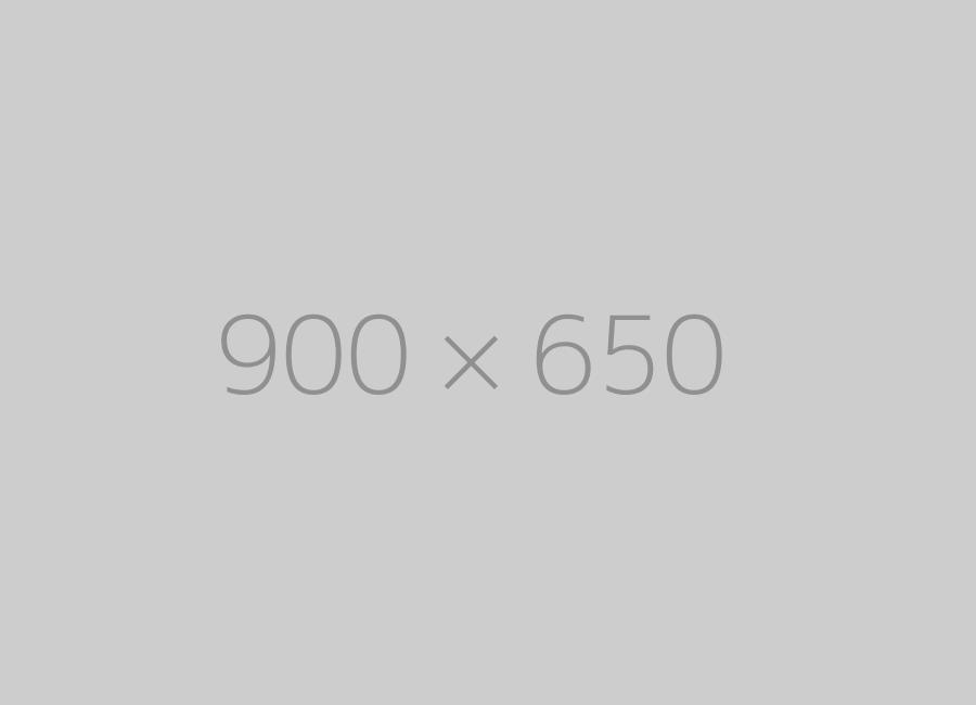 hongo 900x650 ph 1